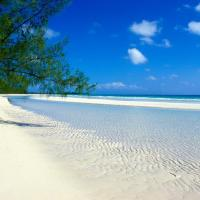 Фото Багамские острова