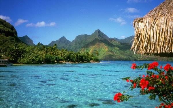 Медовый месяц на Багамах