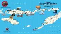 карта о. Флорес