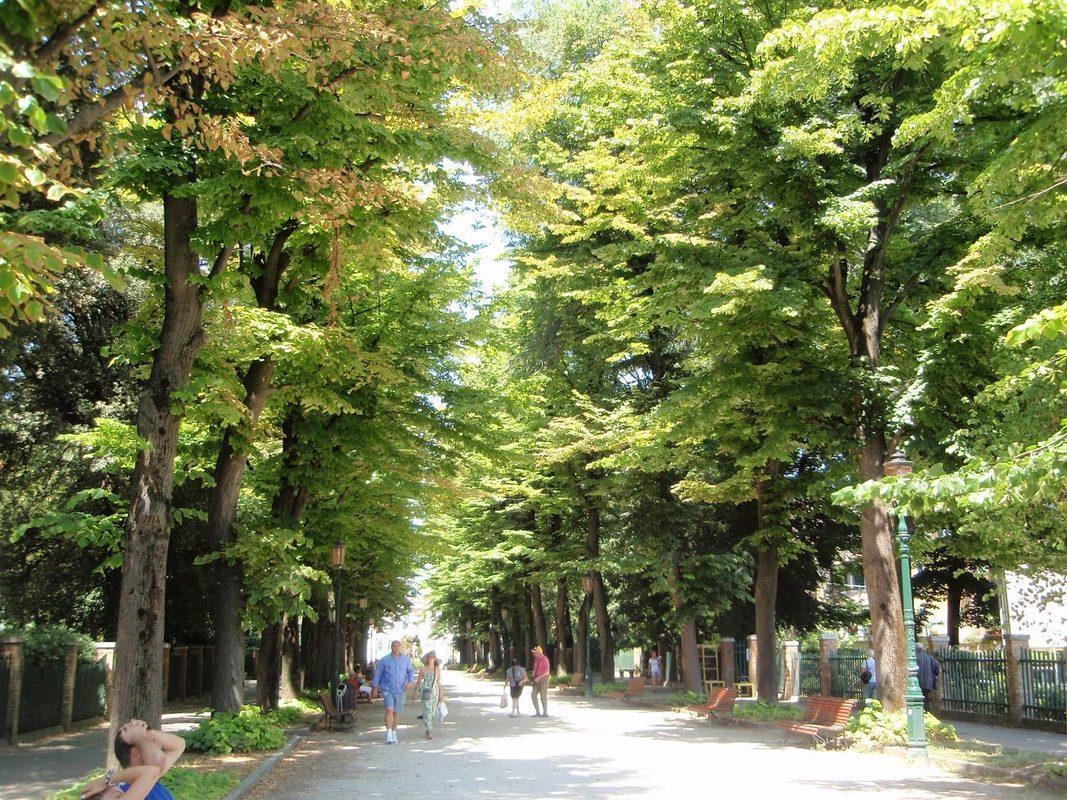 Городской сад и биеннале Венеция - фото 24f2b378195bc
